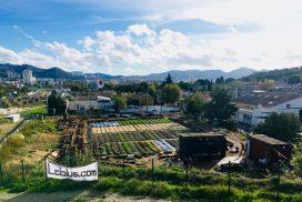 Même abimé, un terrain urbain peut se transformer en potager ! 3