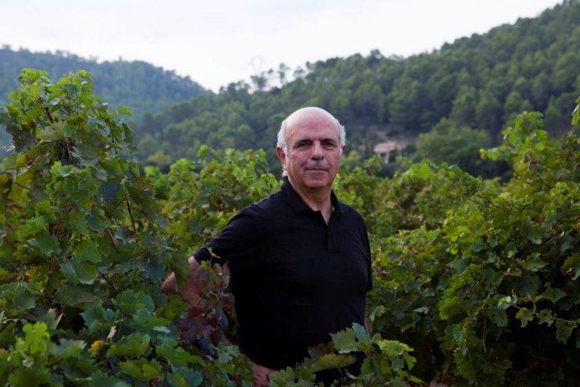 Réchauffement climatique : comment les viticulteurs provençaux s'adaptent 2