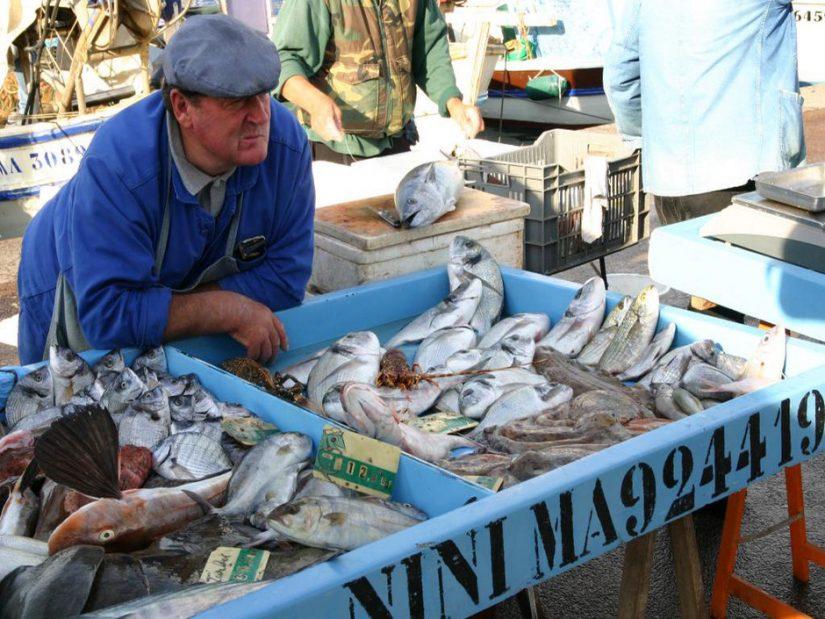 Fais comme pour tes légumes, achète du poisson local et de saison 4
