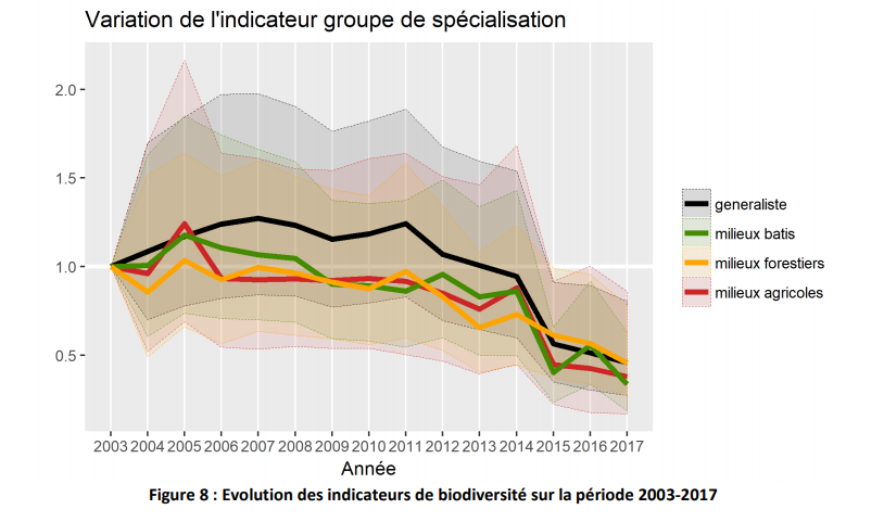 variation-population-oiseau-paca