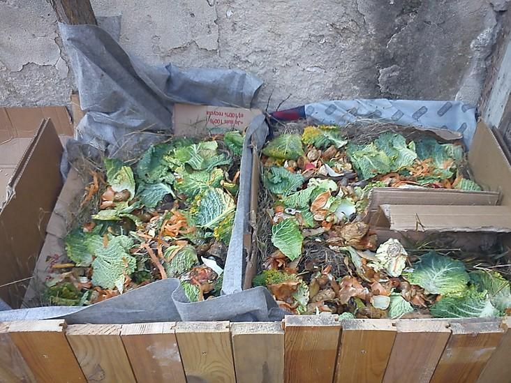 [Série] Biodéchets #3Fabriquer de la terre avec vos épluchures