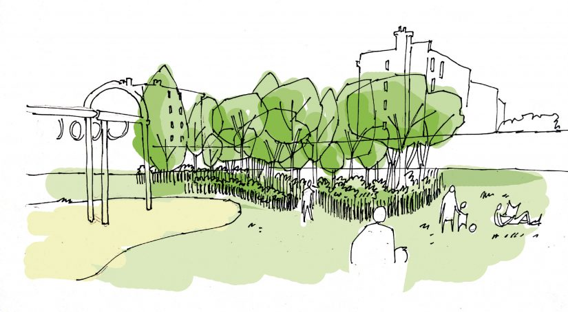 MiniBigForest fait revenir la forêt en ville 5