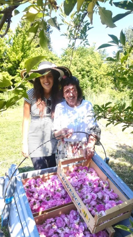 Roseline Giorgis, cultivatrice de rose 2