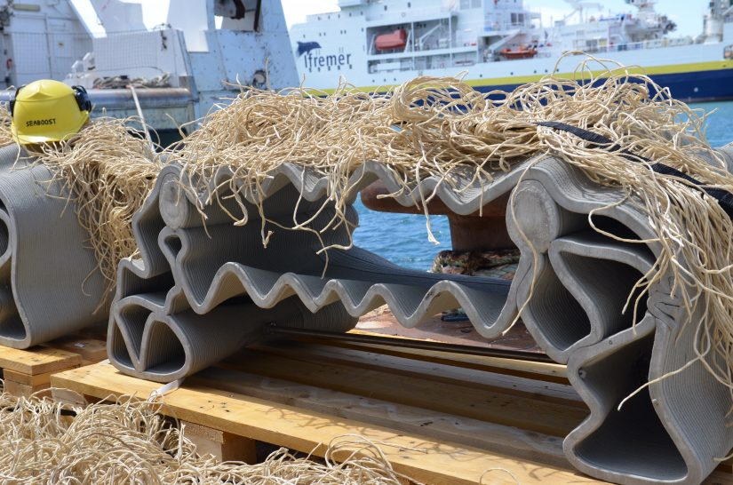 Les récifs artificiels protègent-ils la biodiversité ? 1