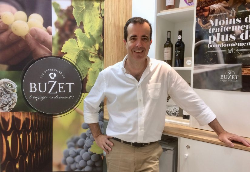 Vins de Buzet : le Développement Durable à 360° 1