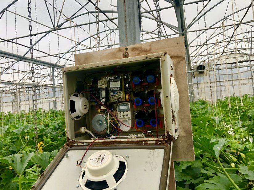 boitier-musique-agriculture
