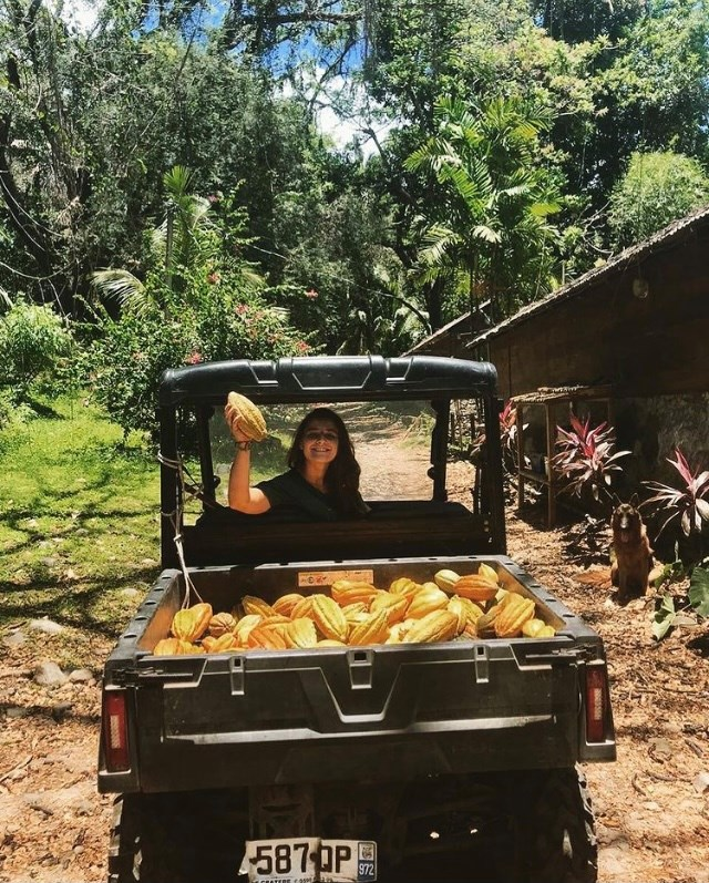 Julie agricultrice cacao