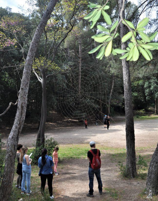parc-marseille-pastre-campagne-landart
