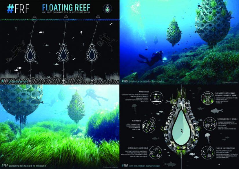 Pure Océan: une alliance généreuse au profit des océans 4